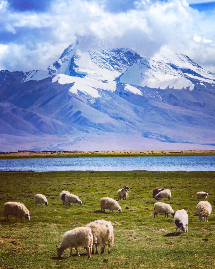 15 Days Mount Kailash and Lake Mansarovar Group Tour. Day 7_Lake Mansarovar