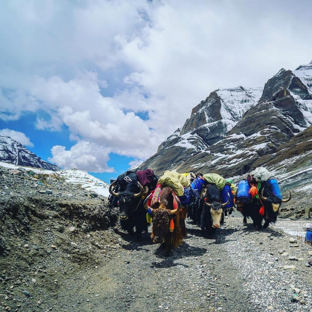 15 Days Mount Kailash and Lake Mansarovar Group Tour. Day 8_Darchen